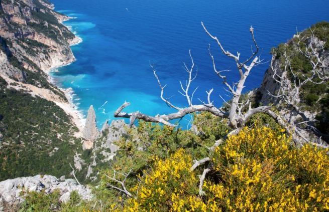 Un'immagine dell'isola