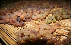 NL25 - 4 - vin santo - uva