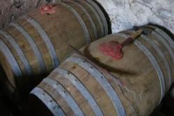 vin-santo-di-caratello