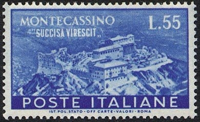 NL36 - Montecassino - stroncata germoglia nuovamente