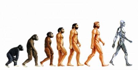human-evolution-evoluzione-umana-