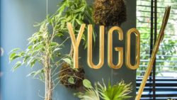 yugo-fusion-bar-my-business-virtual-tour-11-2432220139