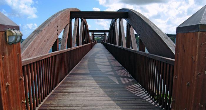 ARCHITETTURA - Il legno ed altri materiali, saranno il cemento del futuro?