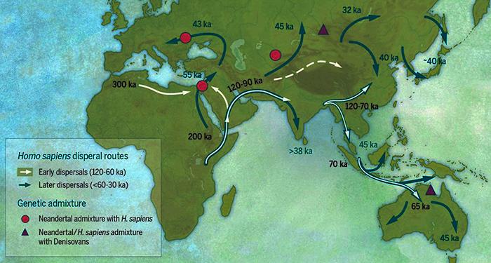 GENETICA - Quanto Neanderthal sei?